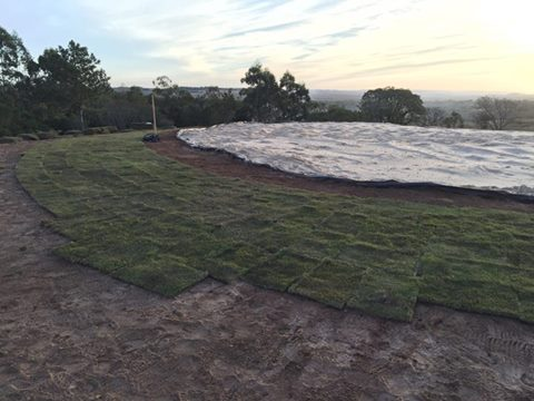 smgc colocação de grama no entorno dos greens